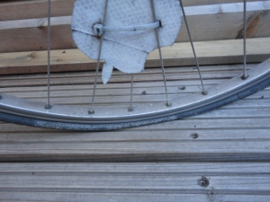 DSC04098 Plattfuß