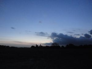DSC04430 late sundown top