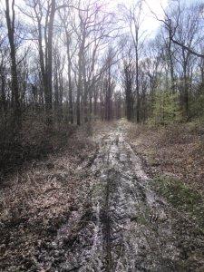 DSC04869 Cross-Trail