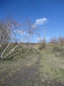 DSC04881 Cross-Trail