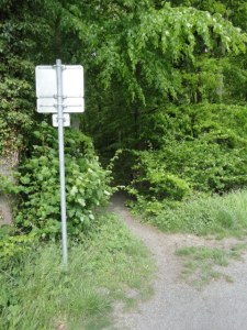 DSC05114 Traileingang