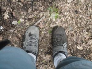 DSC05117 Trail Shoes