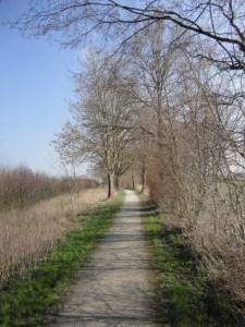 DSC06650 werseradweg