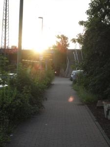 DSC07391 radweg