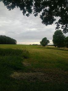 landscape_ergebnis