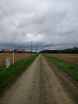 nice-land_ergebnis
