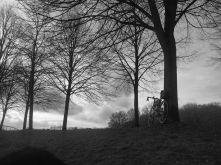 bike-star_ergebnis